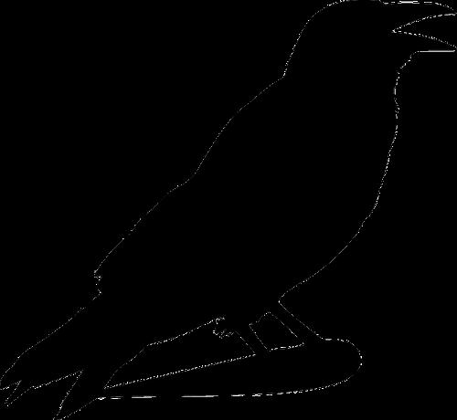 Raven silhouette templates