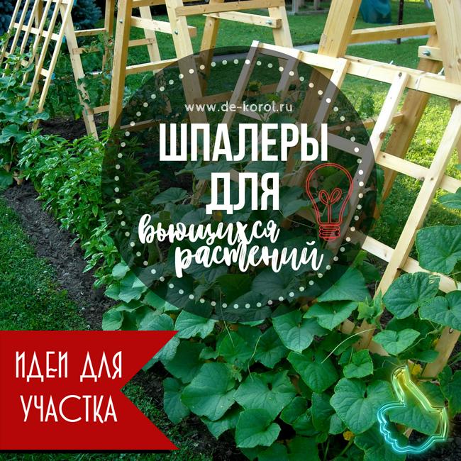 Лучшие идеи шпалер для огурцов, фасоли и прочих вьющихся растений (более 40 фото)