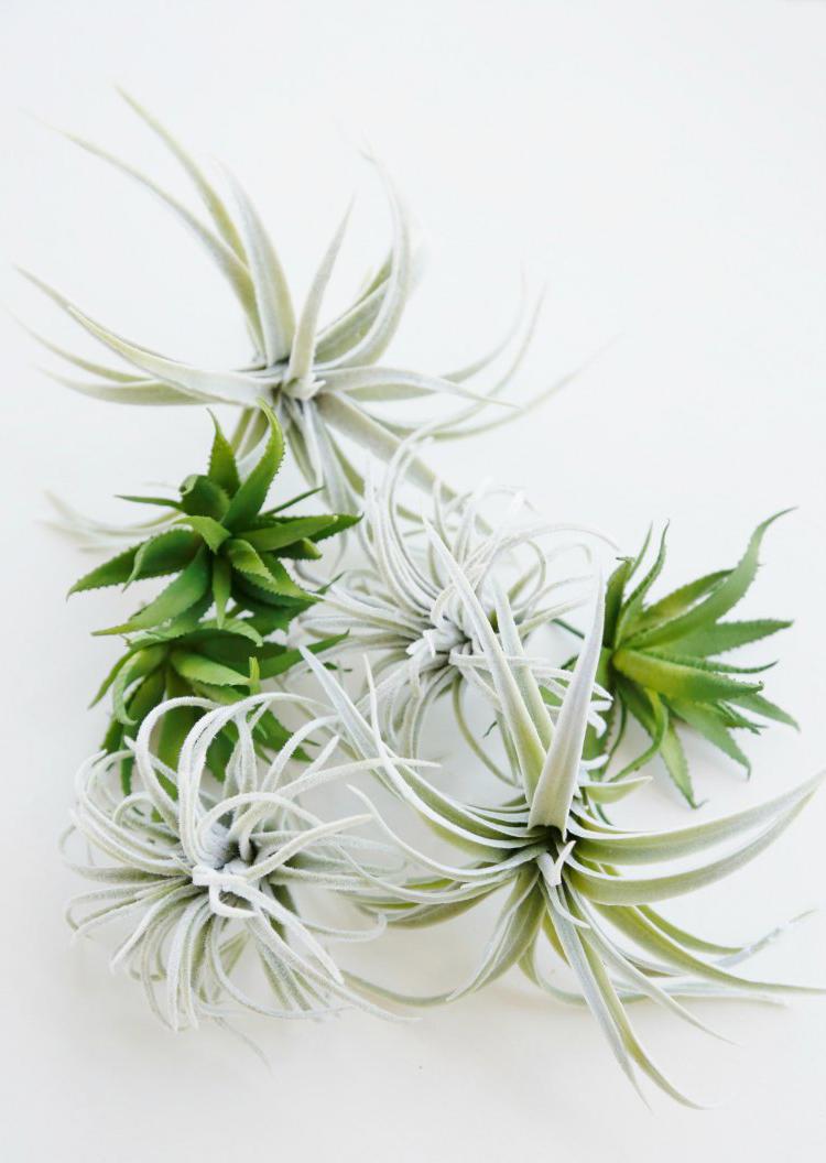 Стильное кашпо для цветов в эко-стиле из березовой ветки (мастер-класс)
